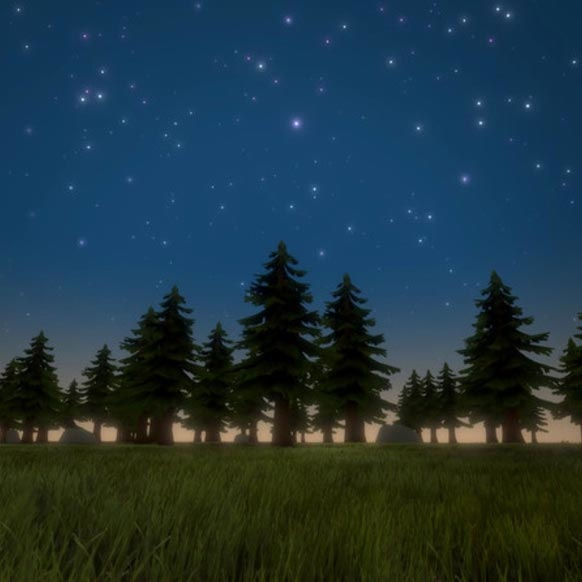 Dynamic Starry Sky night forest scene